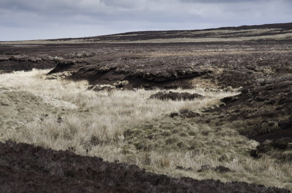 Crow Hill, possible location of the 1824 Stanbury Bog Burst
